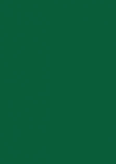 Papel Color Plus A4 180g -Brasil 50 Folhas